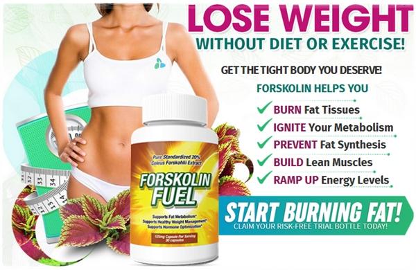 forskolin diet secret