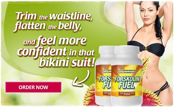 buy apex forskolin belly melt