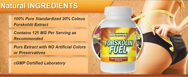 forskolin belly melt usa